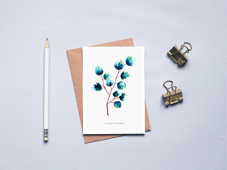 carte herbier eucalyptus