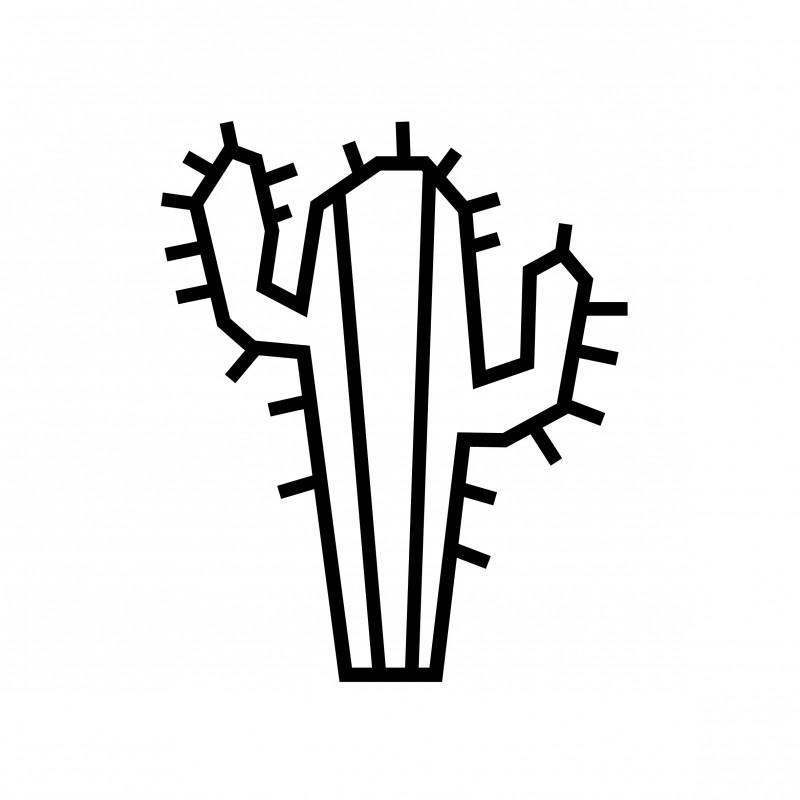 kit masking tape cactus